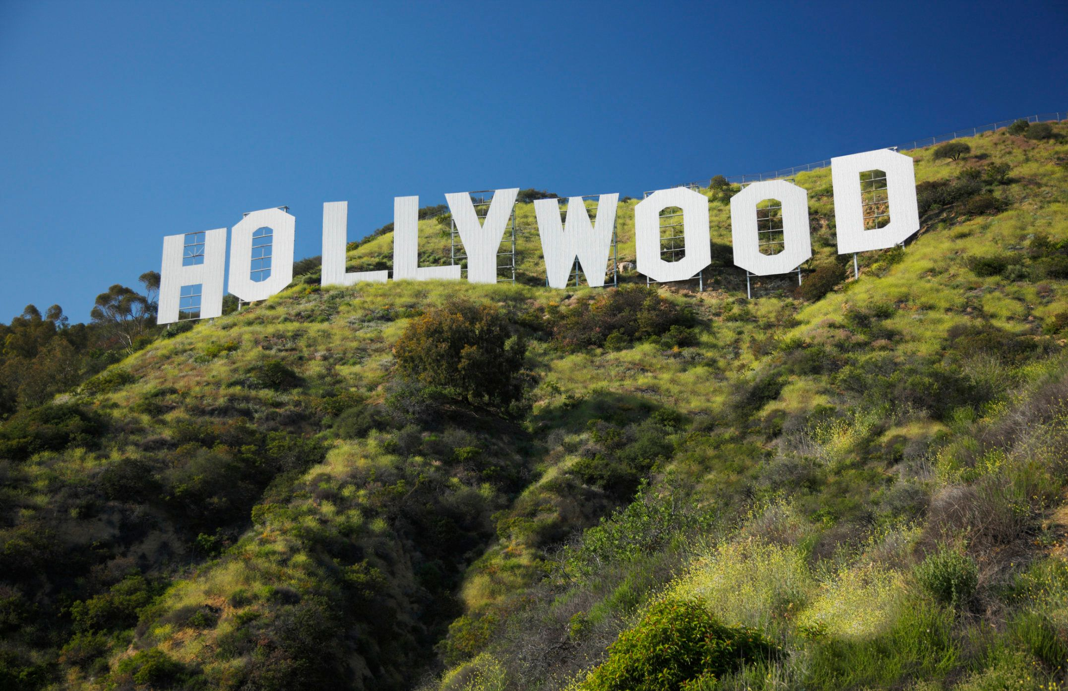 For the second time in four years, a human skull has been found by hikers near Los Angeles' iconic Hollywood sign.