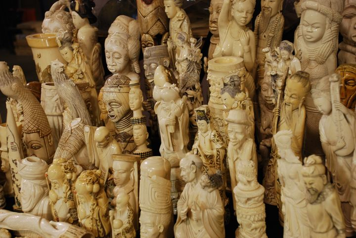 These illegal ivory carvings were seized by U.S. Fish and Wildlife Service Law Enforcement special agents, and destroyed in 2
