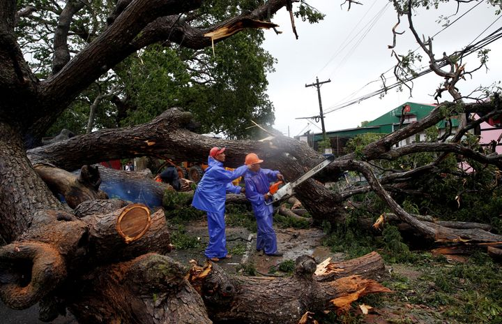 Government workers cut branches of an uprooted tree along a road after Typhoon Haima struck Laoag city, Ilocos Norte in north