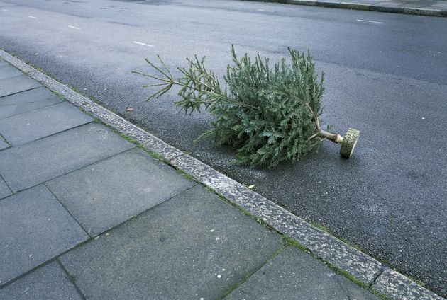 When Should You Take Your Christmas Tree And Decorations Down?
