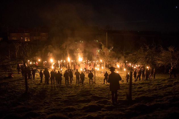 A wassail near Tenbury Wells, Worcestershire, on 4 January this