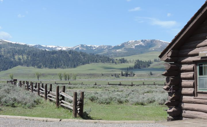 Lamar Valley, Yellowstone National Park