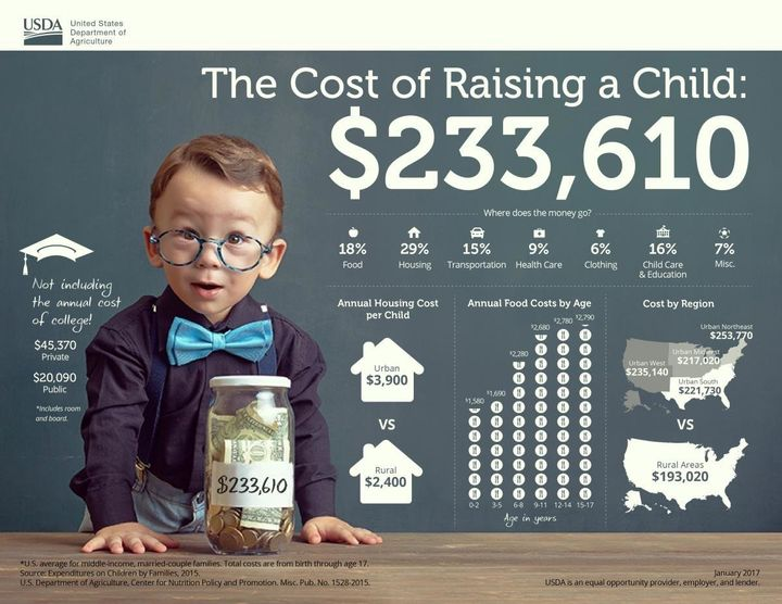 This infographic from the USDA outlines the cost of raising a child in the United States from birth to age 17.