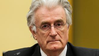 Bosnian Serb wartime leader Radovan Karadzic appears in the courtroom for his appeals judgement at the International Criminal Tribunal for Former Yugoslavia (ICTY) in The Hague July 11, 2013. REUTERS/Michael Kooren/File photo