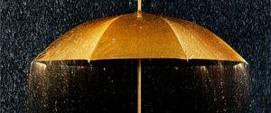 GOLD RAIN UMBRELLA LUXURY PROTECTION
