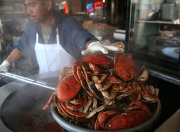 Warmer Oceans Increase Likelihood Of Toxic Shellfish, Study Finds