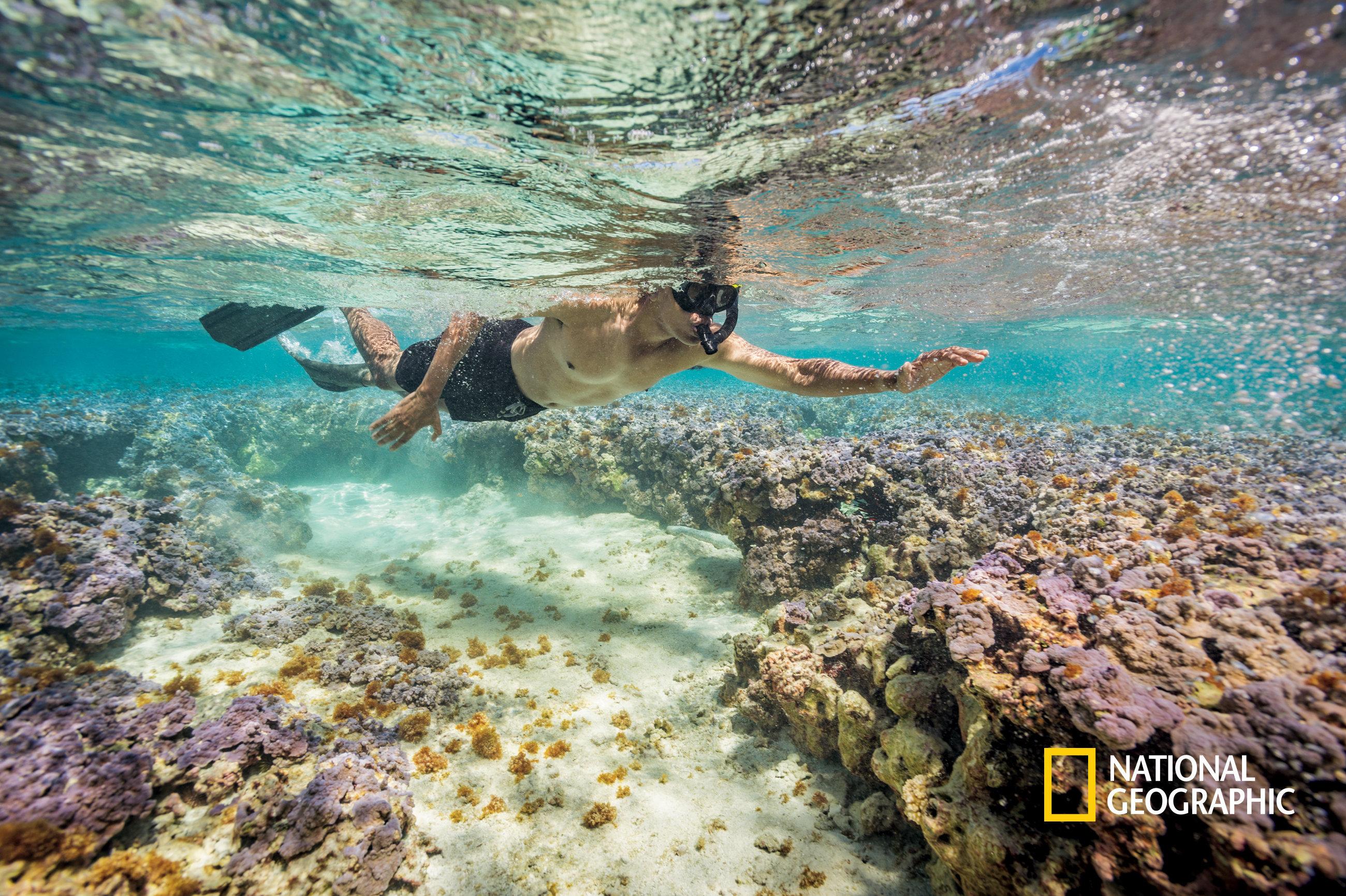 Barack Obama Somehow Manages To Make Even Snorkeling Look