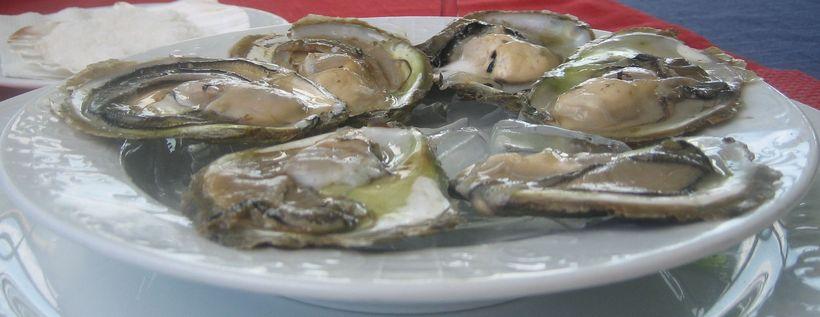Ston Oysters -  Vila Koruna Restuarant, Mali Ston