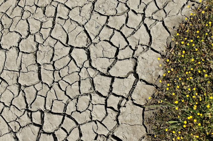 Mud cracks along a dried riverbed are pictured near San Ysidro, California March 31, 2016.