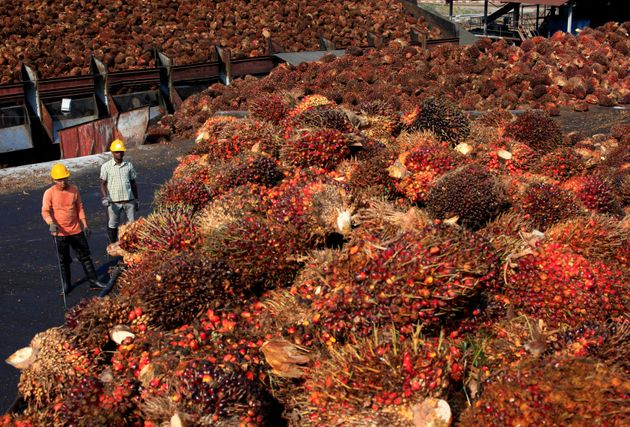 Some Palm Oil Products Are Being Pulled From Stores After Reports Link It To
