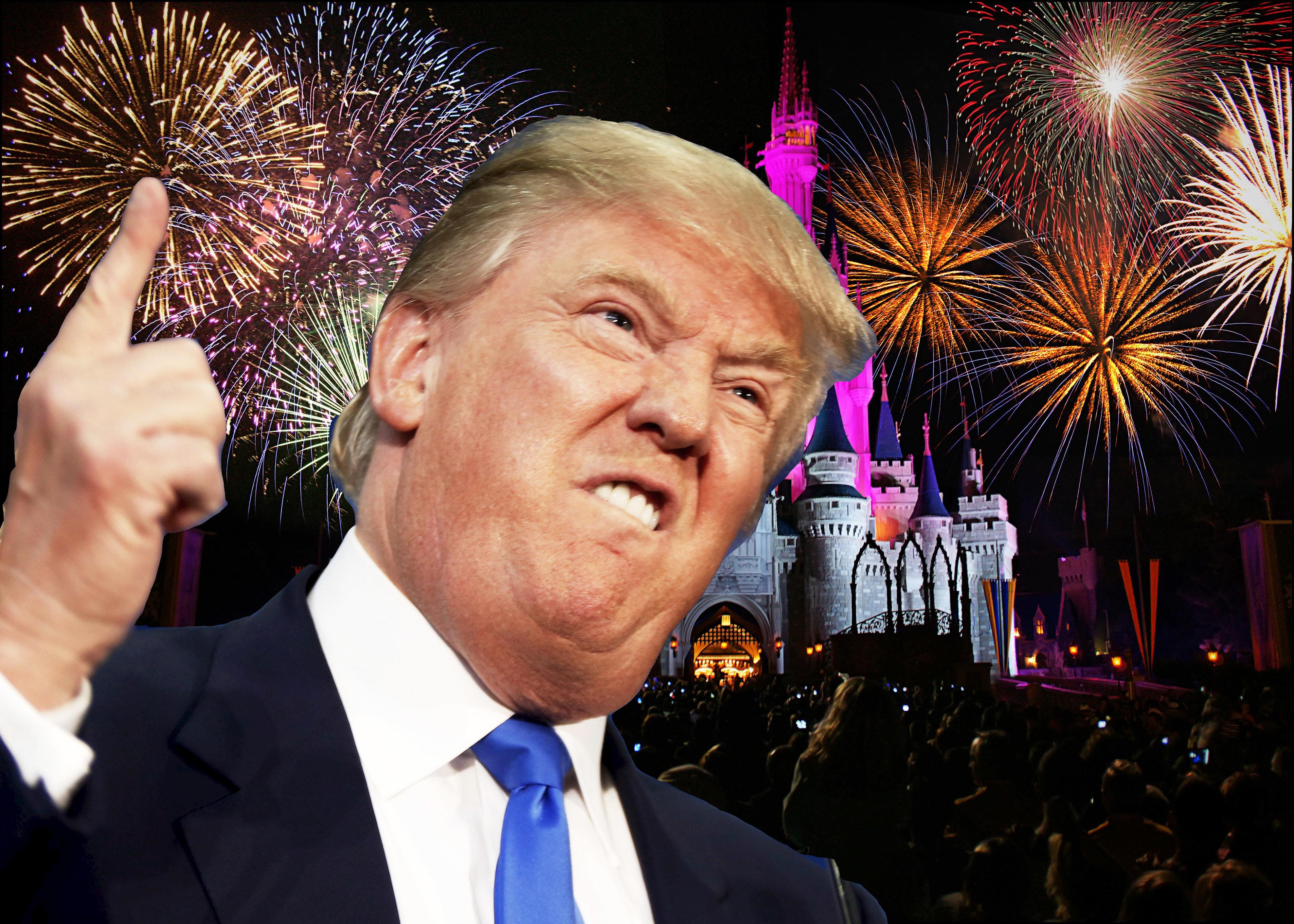 [UNVERIFIED CONTENT] walt disney world - magic kingdom castle fireworks