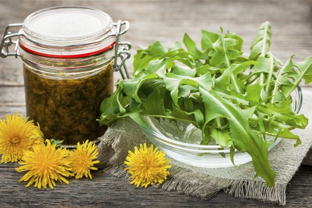 This is what dandelion greens look