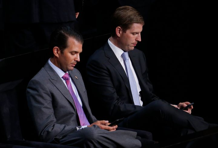 Donald Trump Jr. and his brother Eric at the Republican National Convention in July.
