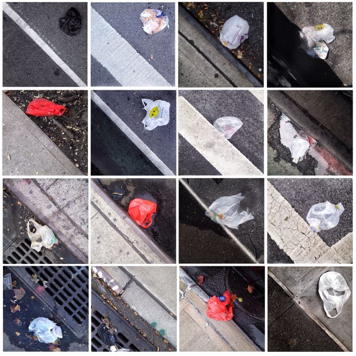 Photographs of plastic carryout bags littering curbsides in Harlem (part 6).