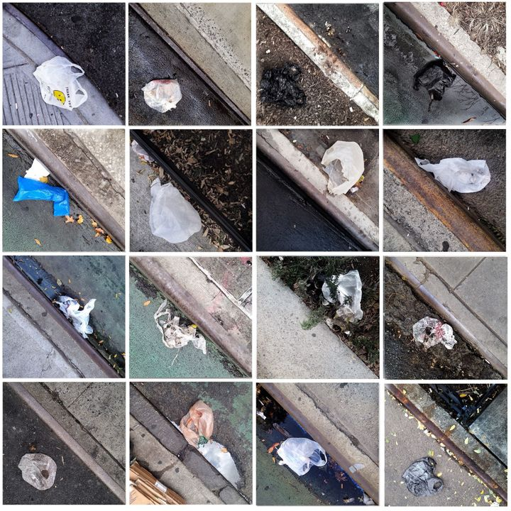 Photographs of plastic carryout bags littering curbsides in Harlem (part 7).