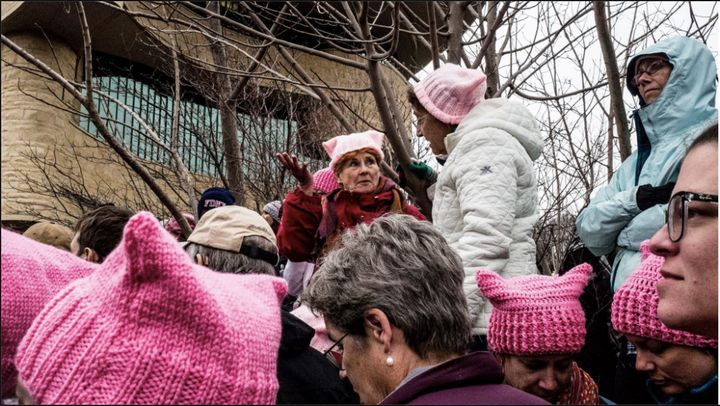 """Pink Pussy Hats."""