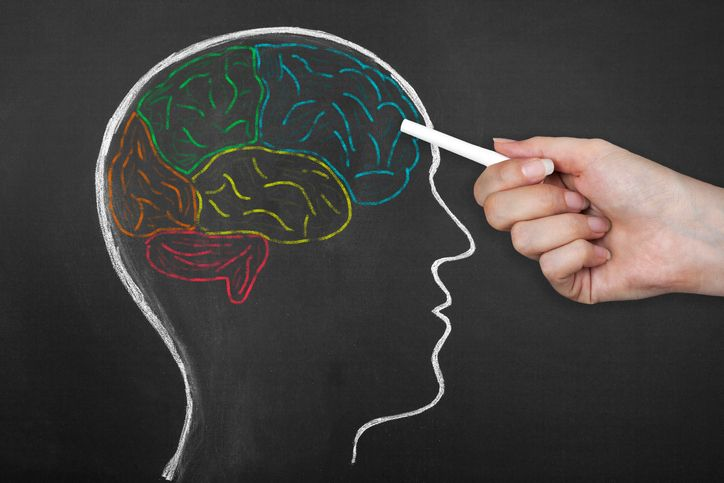 The Science of How Memory Works