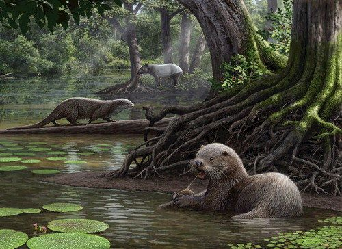 Giant Otters As Big As Wolves Once Roamed The