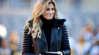 PITTSBURGH, PA - NOVEMBER 13:  Erin Andrews looks on during the game between the Dallas Cowboys and the Pittsburgh Steelers on November 13, 2016 at Heinz Field in Pittsburgh, Pennsylvania.  (Photo by Justin K. Aller/Getty Images)