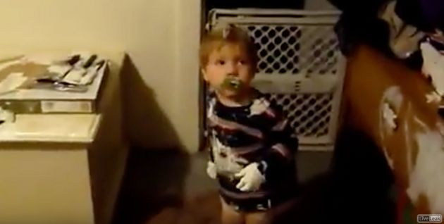 Little Boy Finds White Paint, Decides To Give The Entire House A