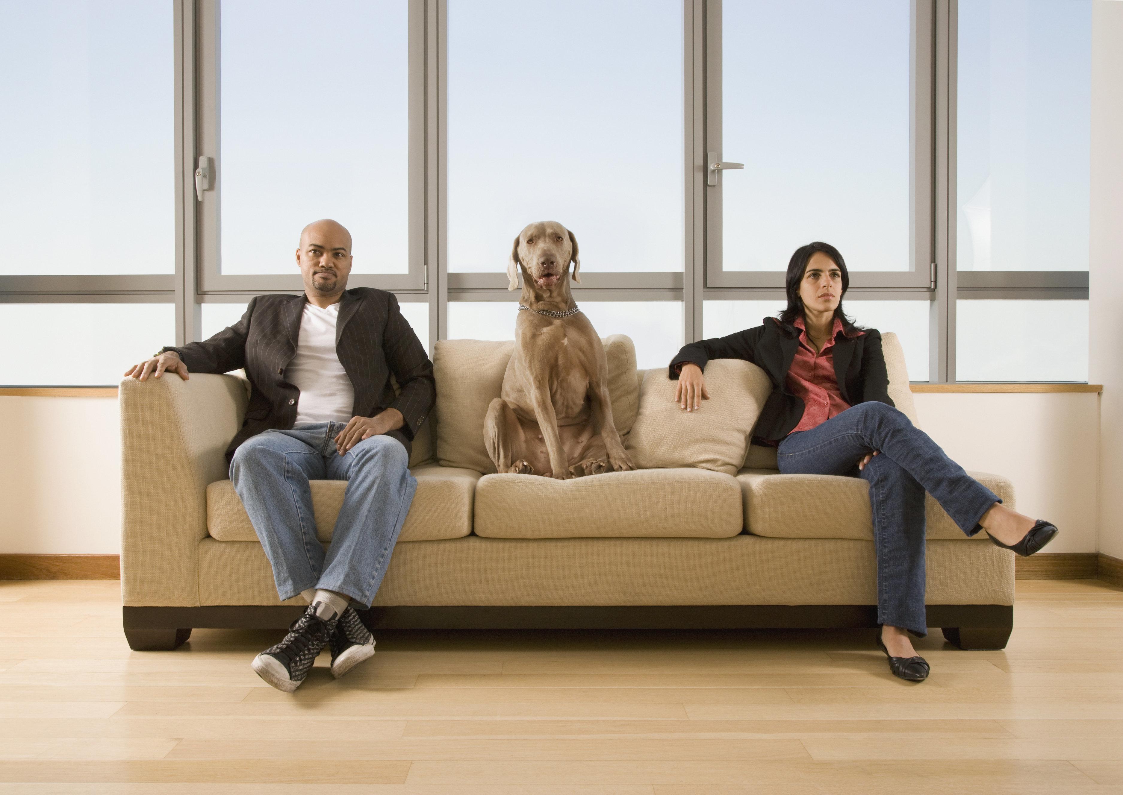 Multi-ethnic couple and dog sitting on sofa