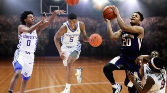 Basket Arena 3d render