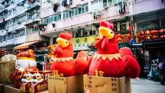 FUK WING STREET, HONG KONG, CHINA - 2017/01/12: The end of January is the Chinese New Year. In the Chinese zodiac the next year is the rooster or chicken year, so there are many New Year decorations related with the chicken. Many people sell festive decorations at stores where people buy New Year items. (Photo by Yeung Kwan/Pacific Press/LightRocket via Getty Images)