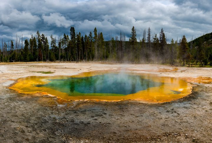 Nearly half of the world's natural World Heritage Sites, including Yellowstone National Park, are threatened by humanity