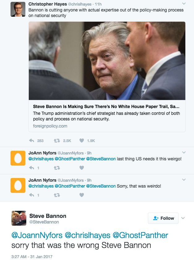 This is not the Steve Bannon you're looking