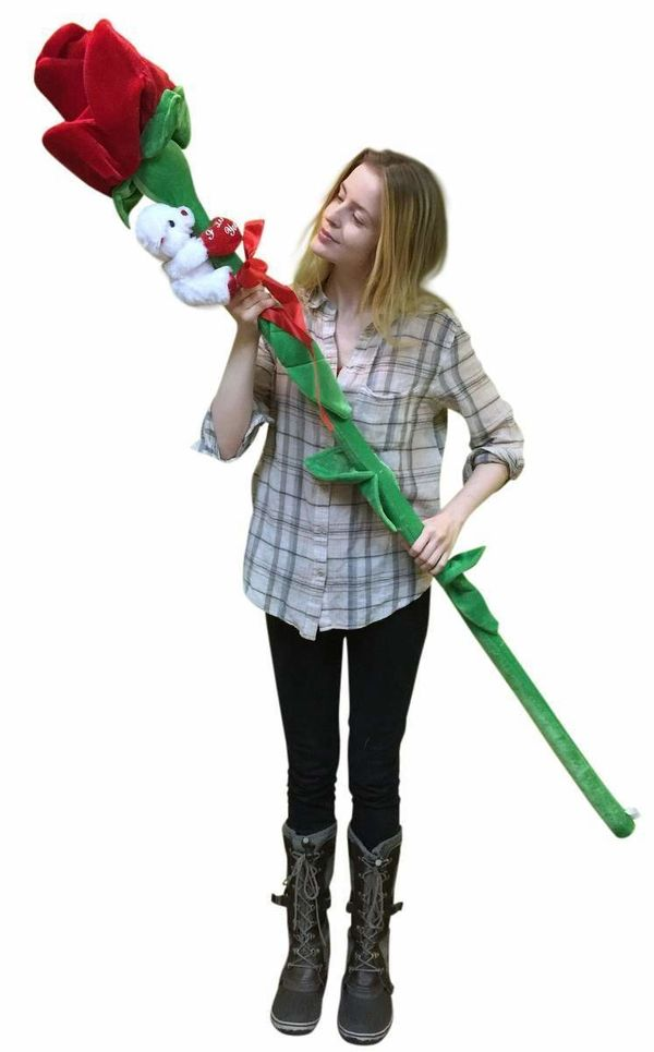 "For the person who confuses quantity with quality: <a href=""https://jet.com/product/Giant-Stuffed-Rose-Is-6-feet-Tall-with-I-"