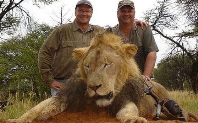 狩猟愛好家に殺されたライオン、セシルの6歳の息子も射殺される