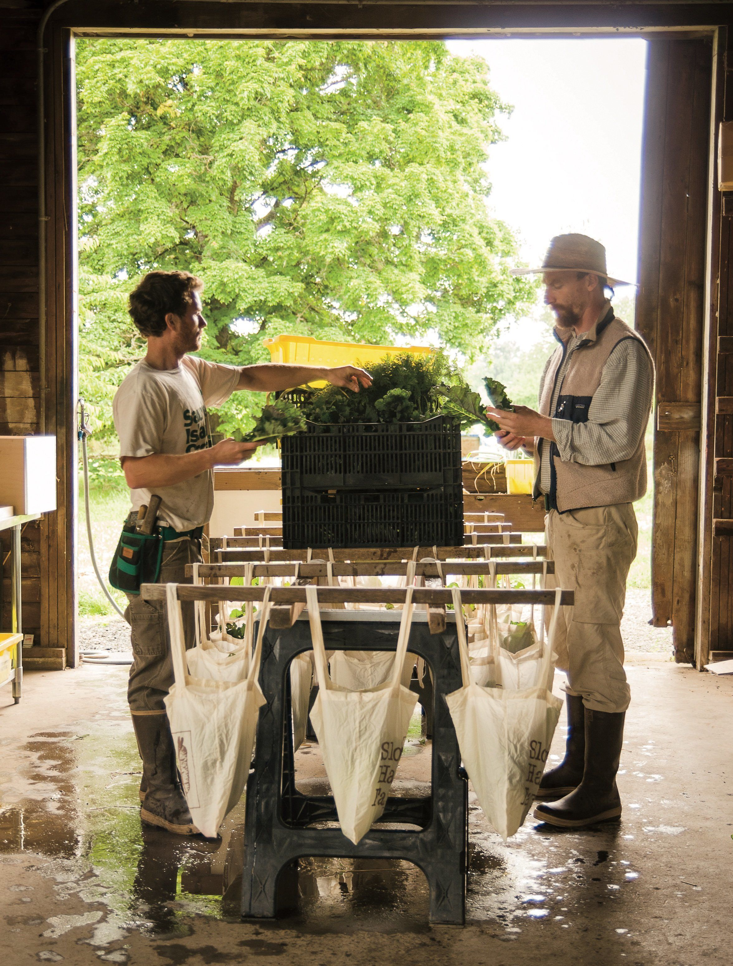 Josh Volk (right) prepares CSA boxes at his farm in Portland, Oregon. Photo from Compact Farms, used with permission from Sto