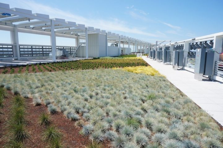 "The ""living roof"" atop Levi Stadium"