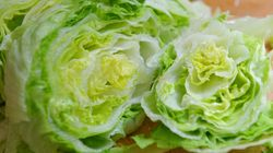 If You Thought 2016 Was Bad, We Have A UK Lettuce And Broccoli Shortage This