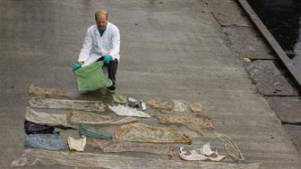 Scientist reveals the plastic bags pulled from the intestines of a beached goose-beaked whale in Norway