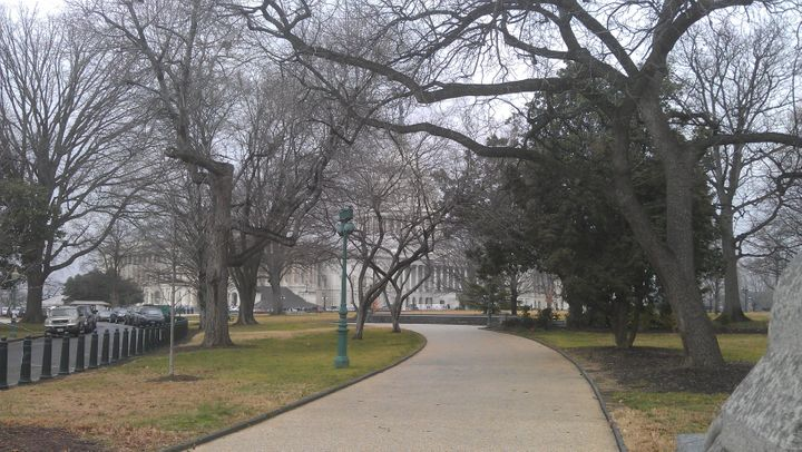 My walk to the plaza in front of the US Capitol (2012)