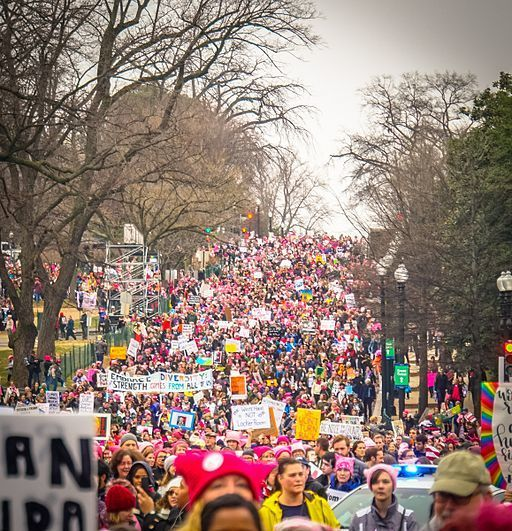 "<em>By Ted Eytan from Washington, DC, USA (2017.01.21 Women's March Washington, DC USA 00095) [</em><a rel=""nofollow"" href=""h"