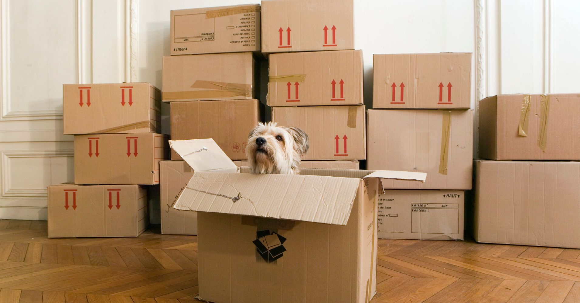 Greyhound Shipping Quote >> We Found A Cheap Way To Move Your Stuff Across The Country