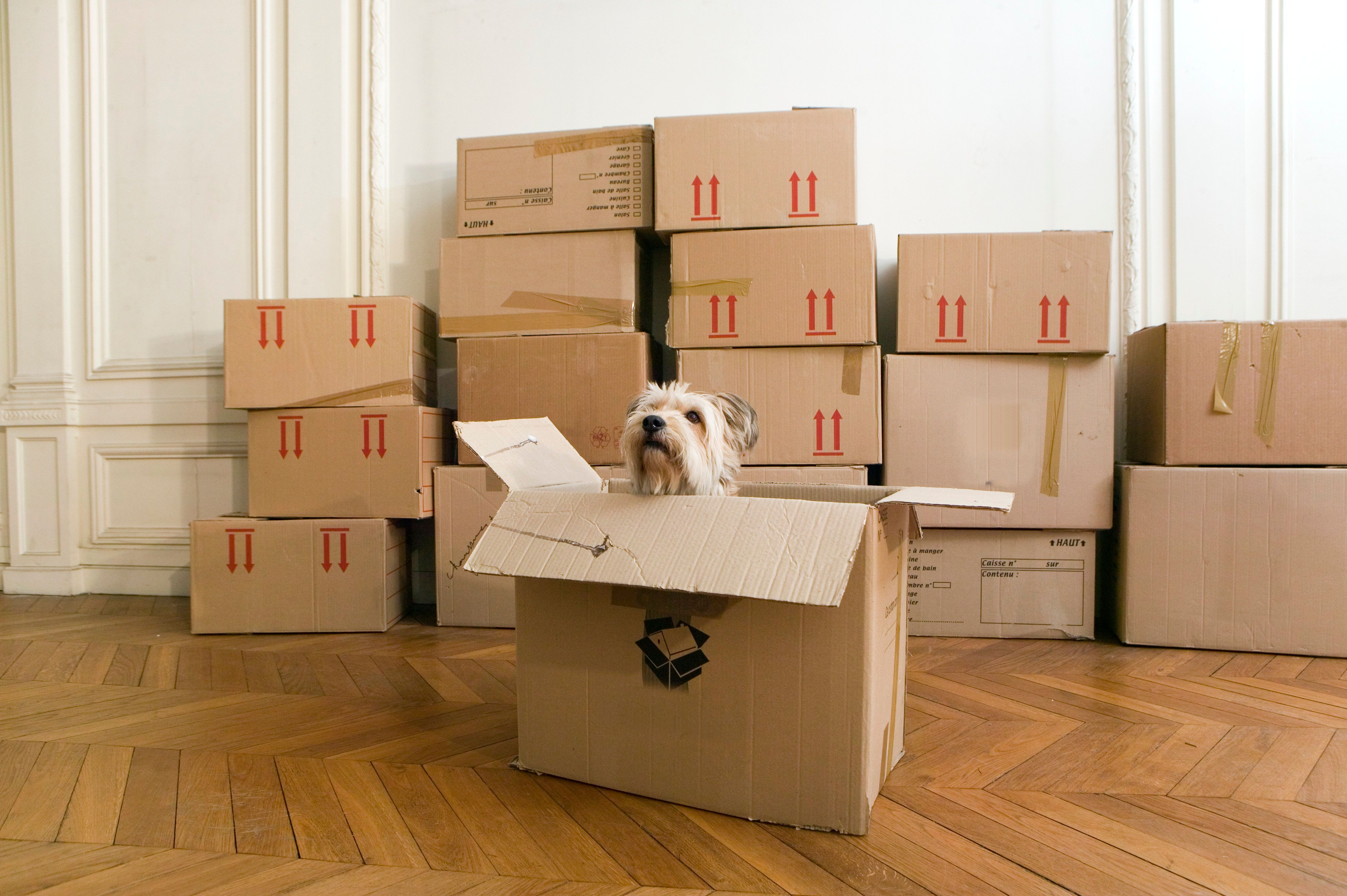 Beau We Found A Cheap Way To Move Your Stuff Across The Country | HuffPost Life