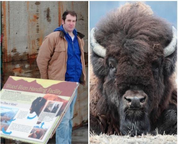 Dr. Jordan Carlton Schaul, Alaska Wildlife Conservation Center (Photos by Doug Lindstrand)