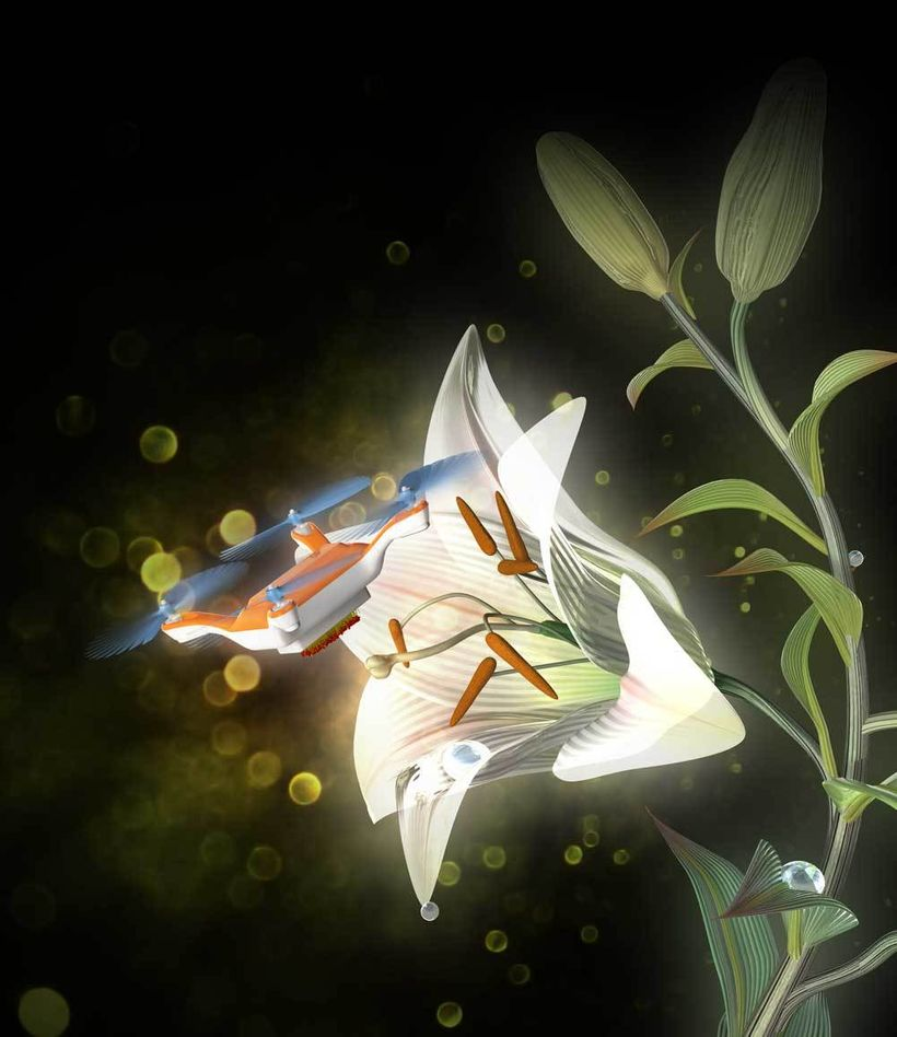 A radio-controlled flying robot equipped with animal hairs coated with a liquid gel pollinates a flower.