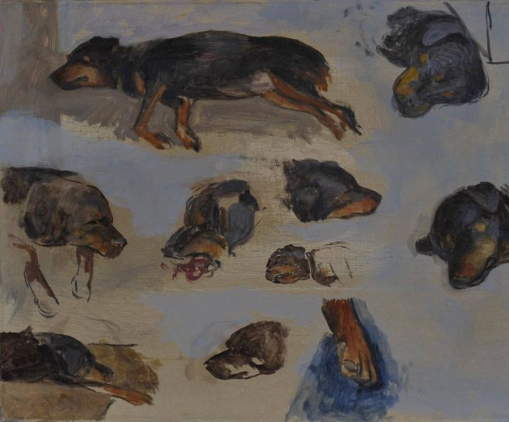 Oil sketches of Ursa