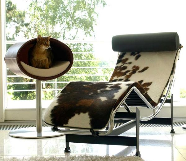 Your feline friends will look so sophisticated inside this designer perch that you might catch yourself debating culture and
