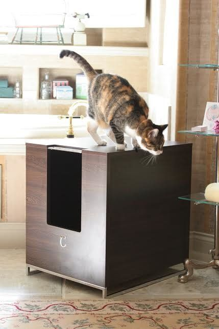 These 13 Cat Furniture Pieces Make Your Home More Chic Than Your