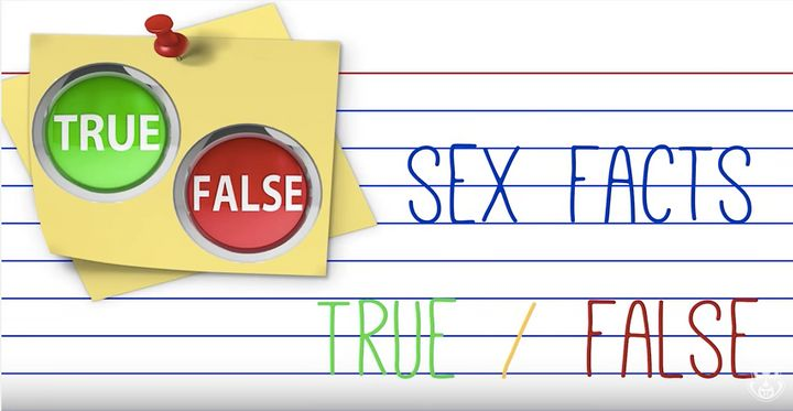 "xHamster's ""The Box"" sex ed series includes informational videos about consent, contraception, and anatomy."
