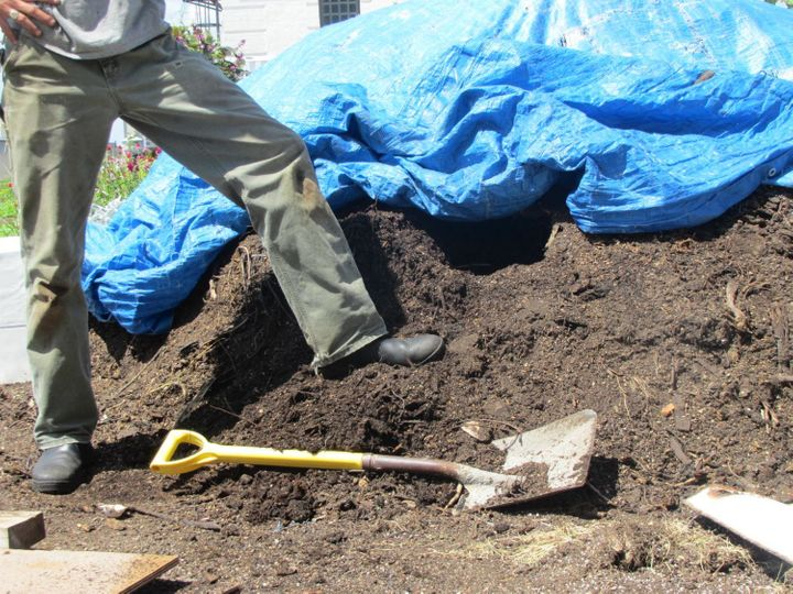 Participating in community gardens and park clean ups is a form of participating in civil society.