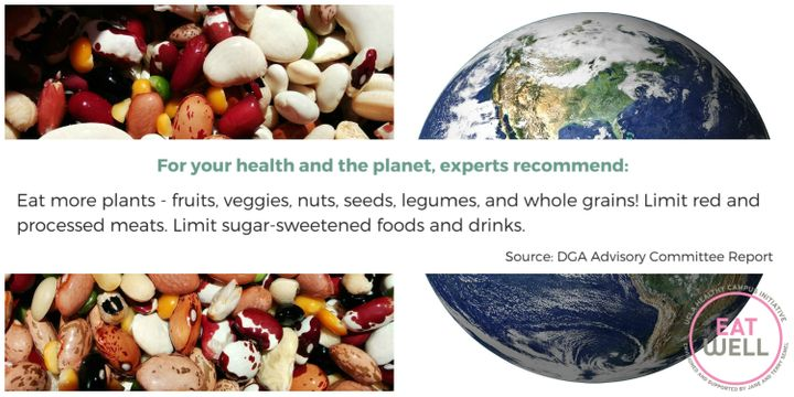 Answers To Your Questions On Food, Health And Climate | HuffPost Life