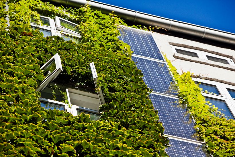 Energy-efficient building in Copenhagen sporting a green wall and photovoltaic panels.