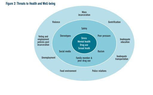 <em>Threats to a young person's health and well-being experience by youth at the peer, neighborhood, and community levels. Fi