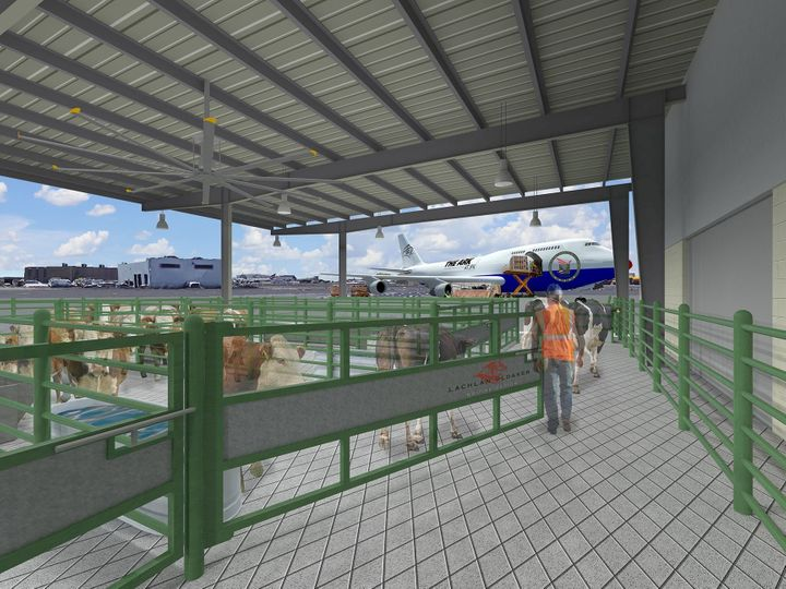 The Equine and Livestock Center has direct access to planes, allowing cows and horses a smooth boarding process.